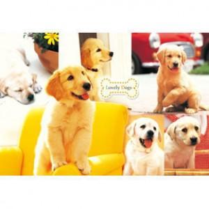 HM100-266 黃金獵犬拼圖1000片