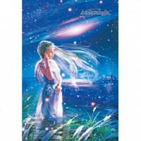 HM1000-108 仙女座-公主的祈禱夜光拼圖1000片