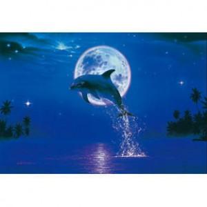 HM1000-113 海豚系列-月光夜光拼圖1000片