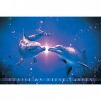 HM1000-142 海豚系列-鳴夜光拼圖1000片