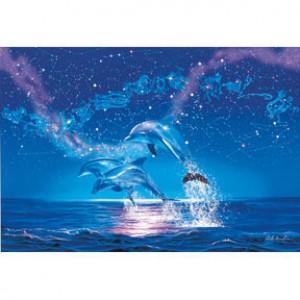 HM1000-152 海豚系列-星座夜光拼圖1000片