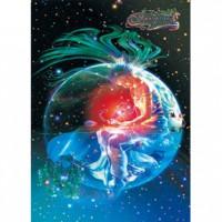 HM520-052 浪漫星座系列-天蠍座夜光拼圖520片