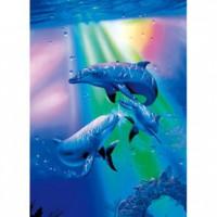 HM520-085 海豚系列-光輝夜光拼圖520片