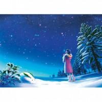 HM520-096 冬-雪夜景夜光拼圖520片