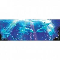 HM954-037G 海豚系列Kiss夜光拼圖954片