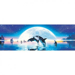 HM954-038G 悠游月之海夜光拼圖954片