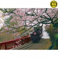 K25-006 台灣之美 嘉義阿里山蒸汽火車  520片夜光拼圖
