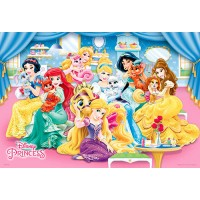 HPD0300S-145 Disney Princess公主(5)拼圖300片-D145
